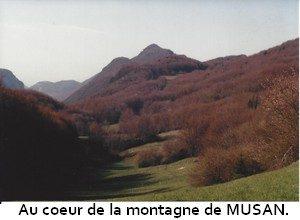leoncel-abbaye-80.1