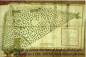 leoncel-abbaye-39.2