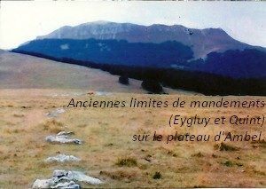 leoncel-abbaye-40.4