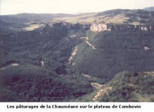 leoncel-abbaye-420