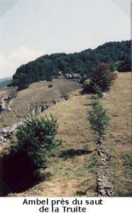 leoncel-abbaye-433