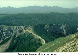 leoncel-abbaye-49.1