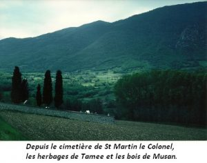 leoncel-abbaye-64.2