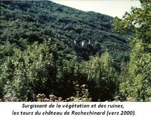 leoncel-abbaye-64.3
