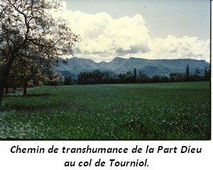 leoncel-abbaye-67.3