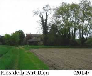 leoncel-abbaye-73.1