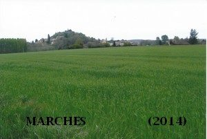 leoncel-abbaye-73.3